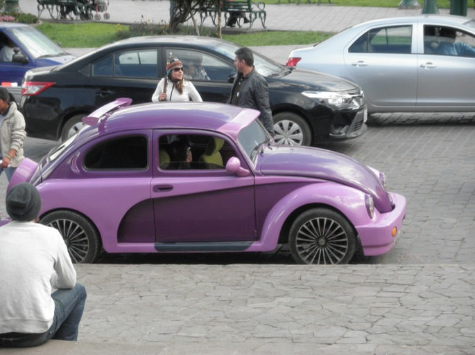 """""""Elmira College"""" car- decked out in purple and gold"""