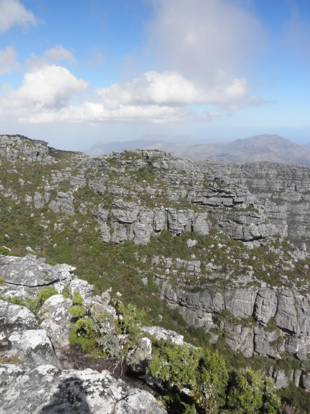 View from top of Table Mountain