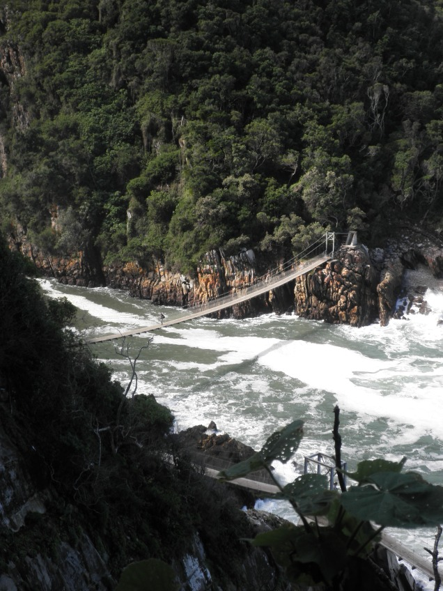 Suspension Bridge at Tsitsikamma National Park