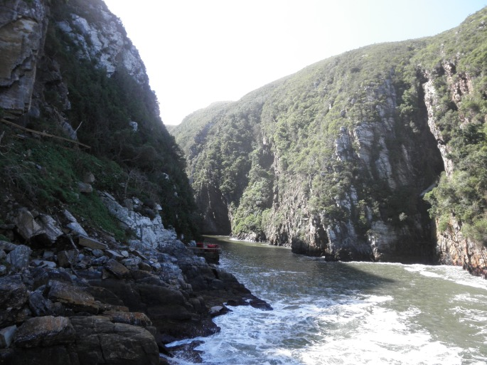 View from suspension bridge at Tsitsikamma National Park