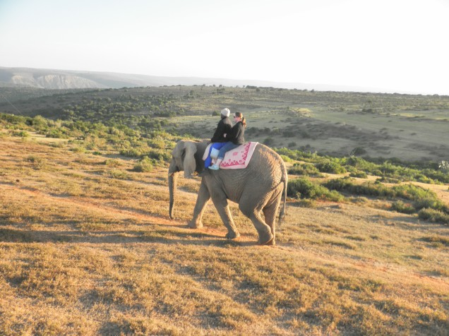 Me riding an elephant at Kwantu Elephant Sanctuary