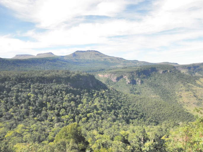 View from lookout on trail in Hogsback