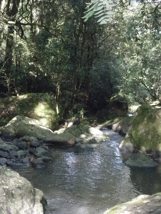 Our hike in Hogsback