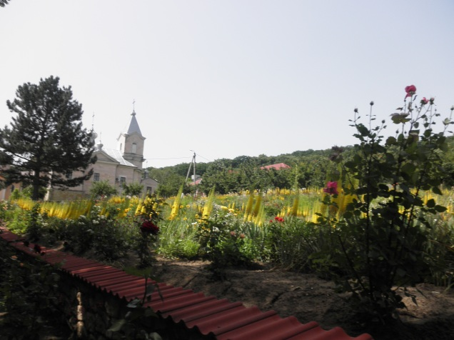 The pretty gardens at Sfantul Gheorghe Monastry