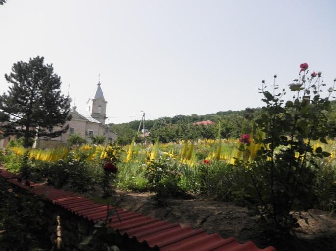 The pretty gardens at Sfantul Gheorghe Monastry