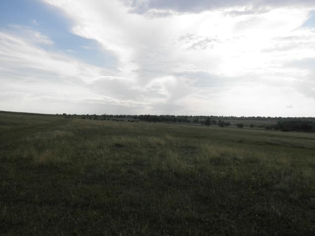 The beautiful, peaceful fields in Festelita