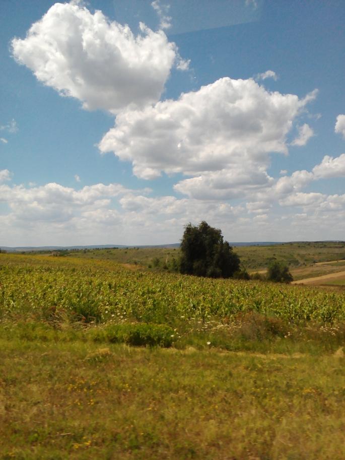 Car trip to Festelita to visit my site