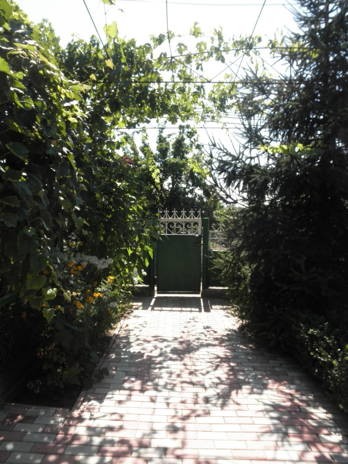 The gate and path to the house at my new home.